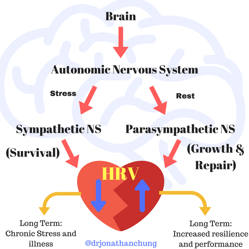 The BEST Vital Sign you're not looking at: HRV - Heart Rate